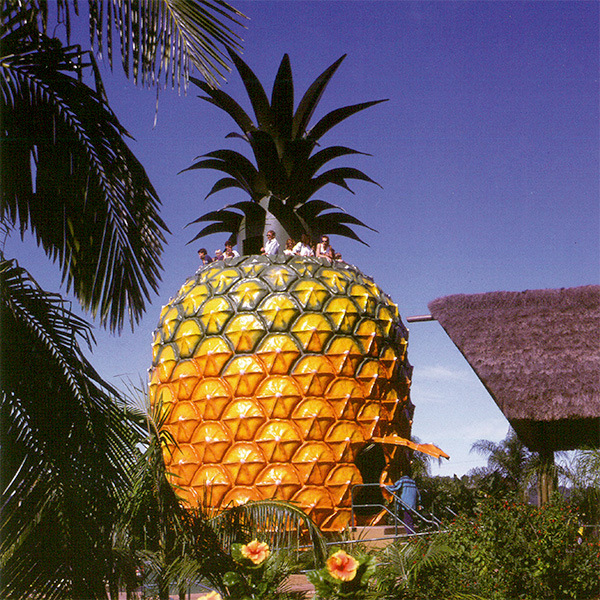 The Big Pineapple, QLD