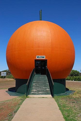 Big Orange, Berri